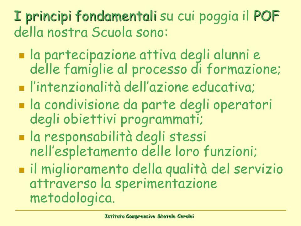 I principi fondamentali su cui poggia il POF della nostra Scuola sono: