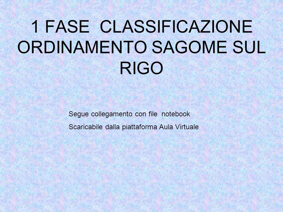 1 FASE CLASSIFICAZIONE ORDINAMENTO SAGOME SUL RIGO