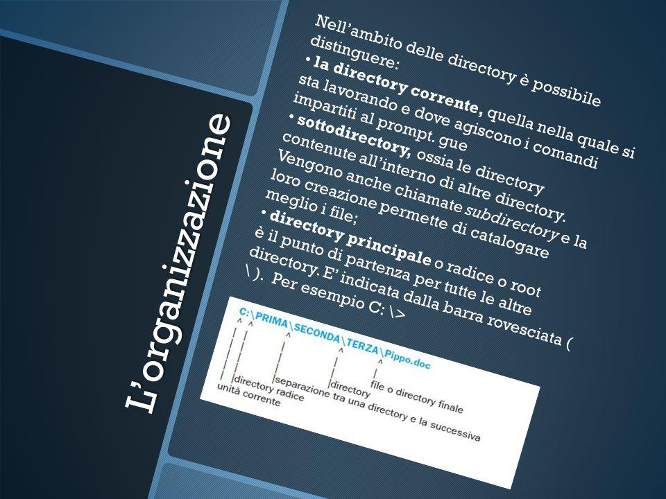 L'organizzazione Nell'ambito delle directory è possibile distinguere: