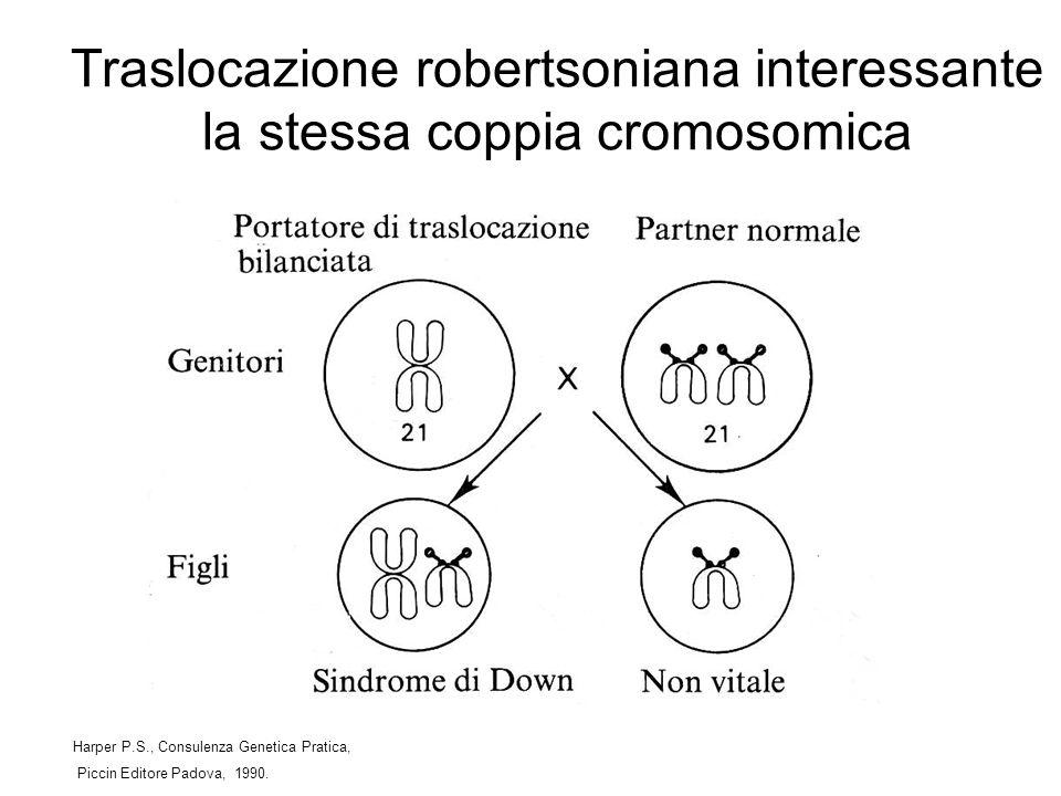 Traslocazione robertsoniana interessante la stessa coppia cromosomica