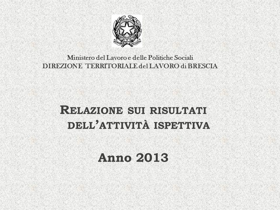Relazione sui risultati dell'attività ispettiva Anno 2013