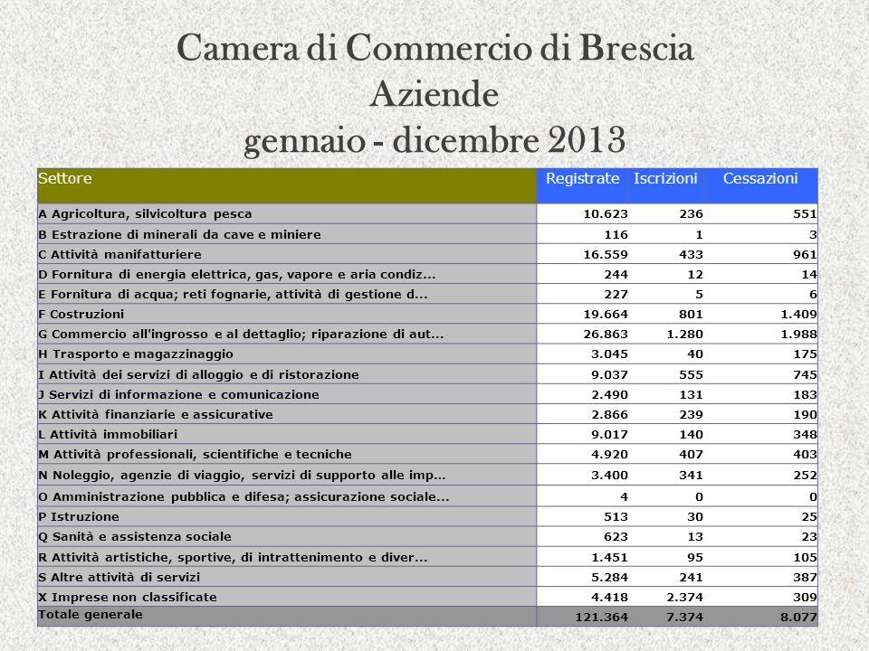 Camera di Commercio di Brescia Aziende gennaio - dicembre 2013