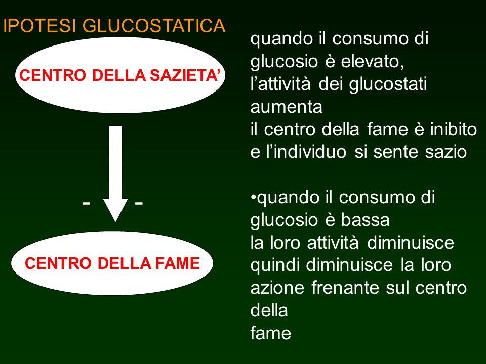 - - IPOTESI GLUCOSTATICA quando il consumo di glucosio è elevato,