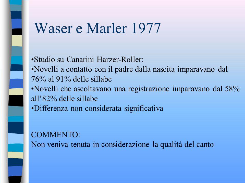 Waser e Marler 1977 Studio su Canarini Harzer-Roller: