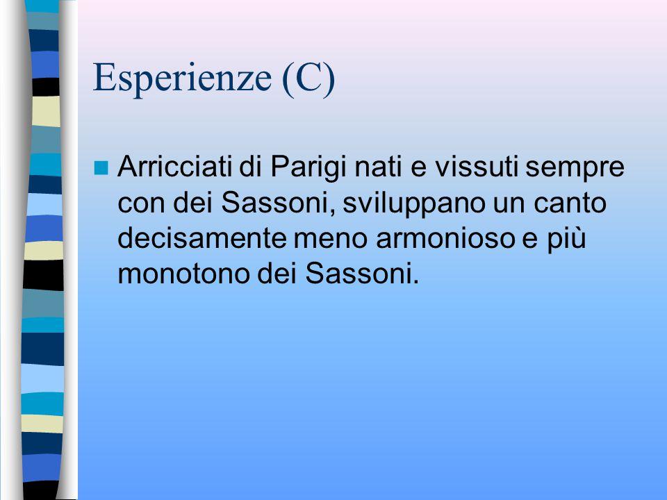Esperienze (C) Arricciati di Parigi nati e vissuti sempre con dei Sassoni, sviluppano un canto decisamente meno armonioso e più monotono dei Sassoni.