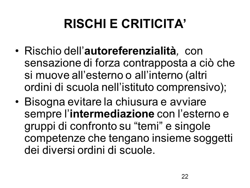 RISCHI E CRITICITA'