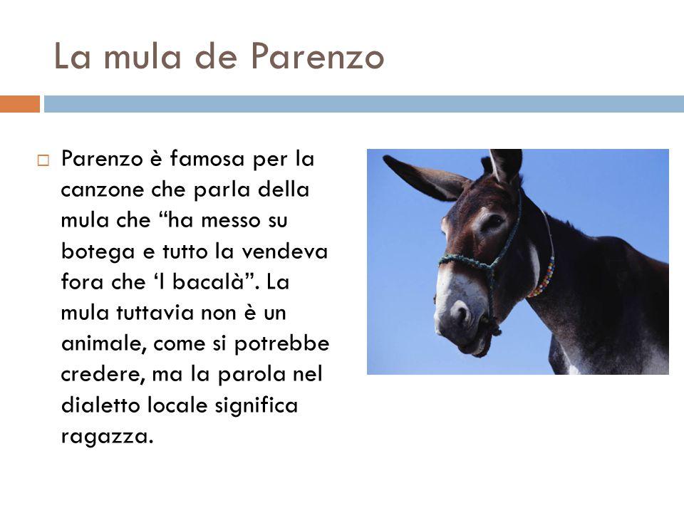 La mula de Parenzo