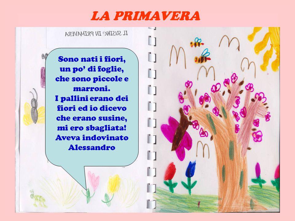 LA PRIMAVERA Sono nati i fiori, un po' di foglie, che sono piccole e marroni.