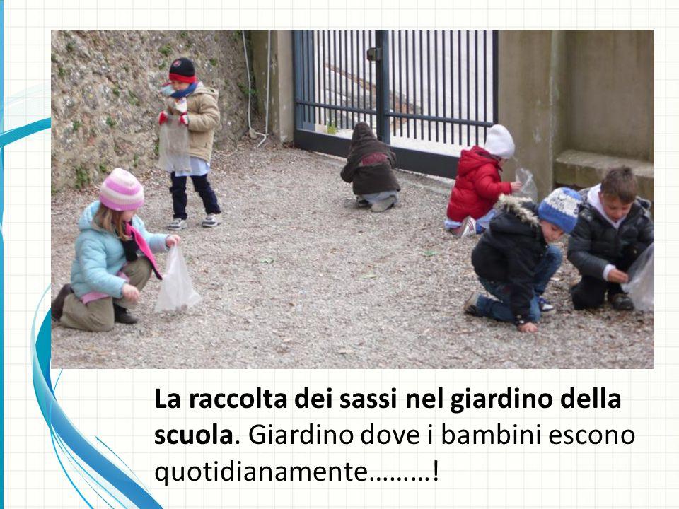 La raccolta dei sassi nel giardino della scuola