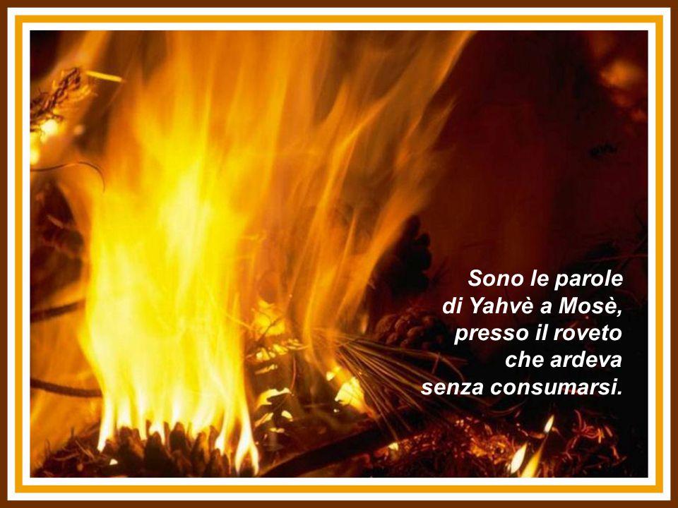 Sono le parole di Yahvè a Mosè, presso il roveto che ardeva senza consumarsi.