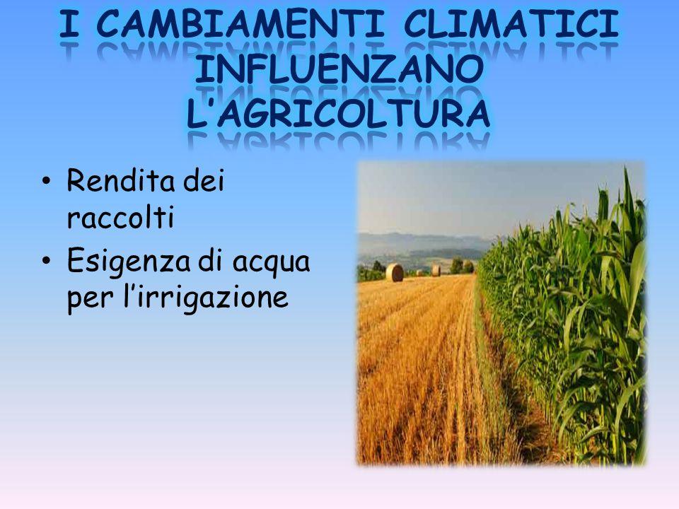 I CAMBIAMENTI CLIMATICI INFLUENZANO L'AGRICOLTURA