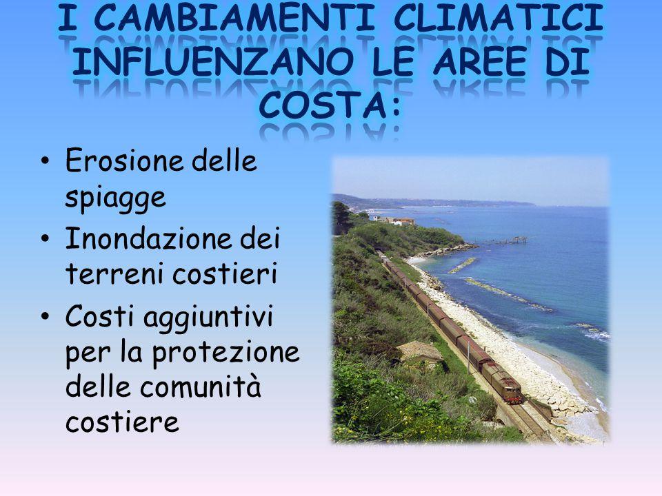 I CAMBIAMENTI CLIMATICI INFLUENZANO LE AREE DI COSTA: