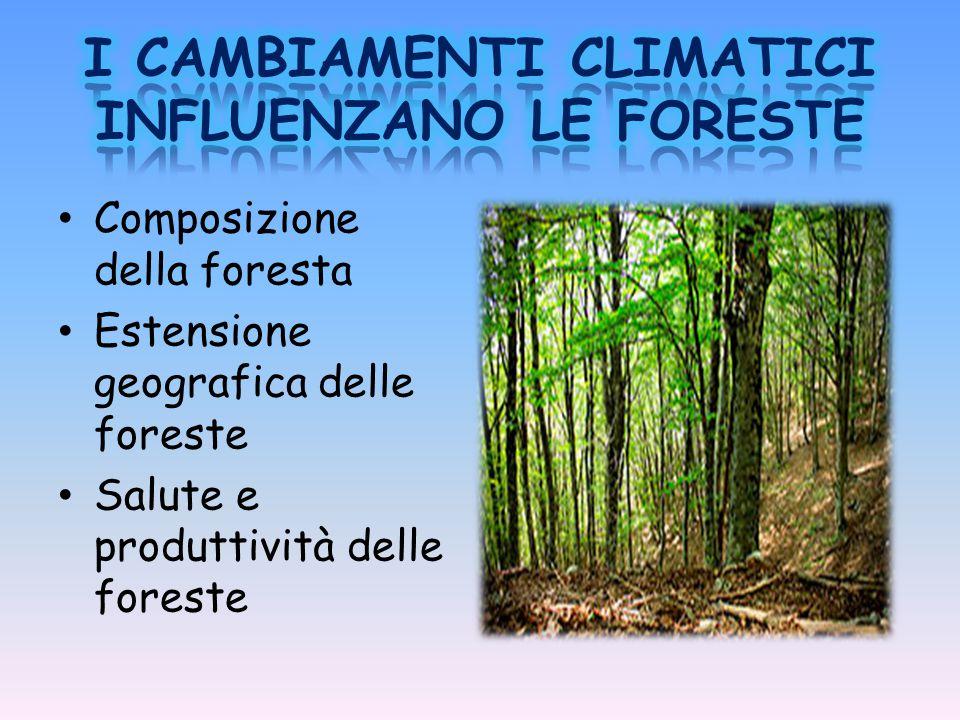 I CAMBIAMENTI CLIMATICI INFLUENZANO LE FORESTE