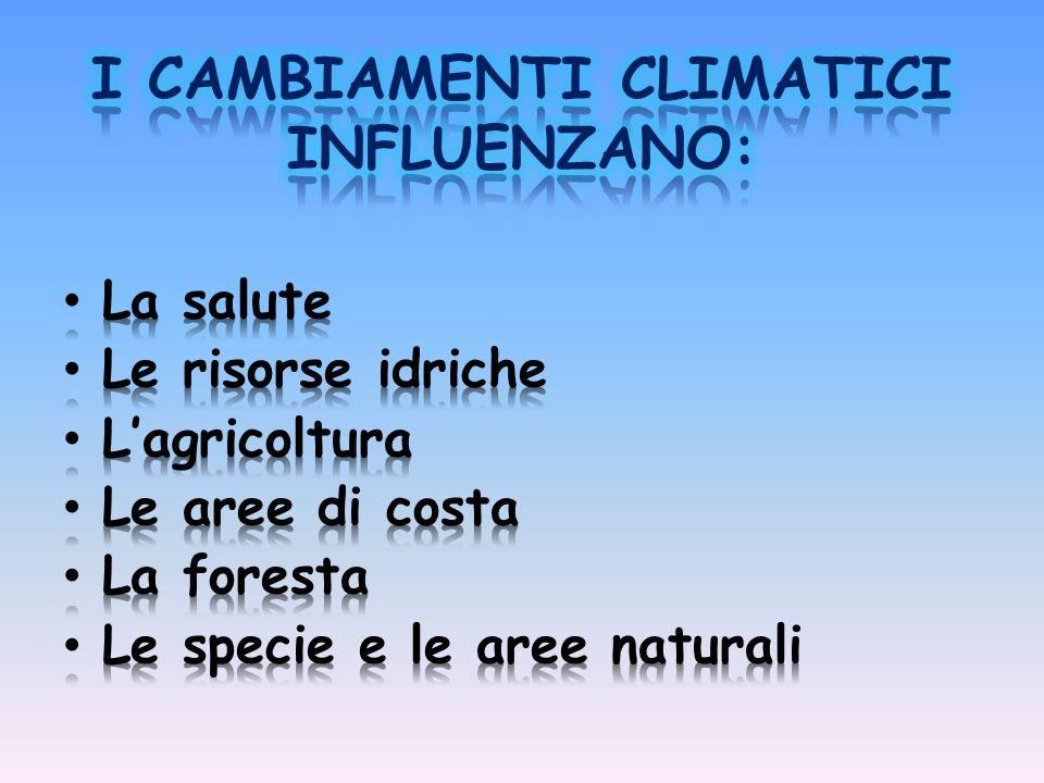 I CAMBIAMENTI CLIMATICI INFLUENZANO: