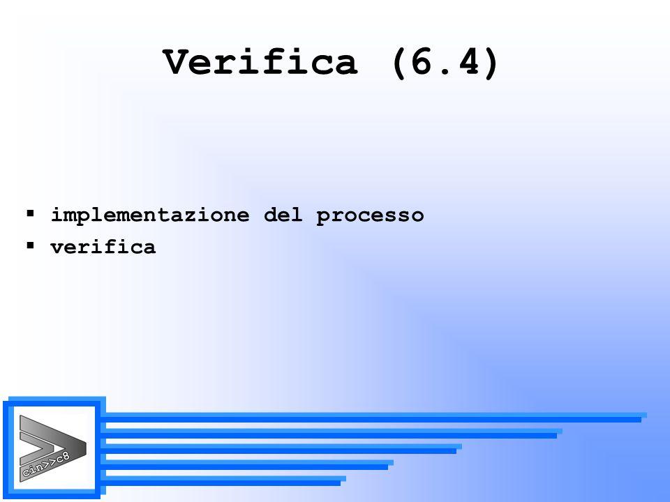 Verifica (6.4) implementazione del processo verifica