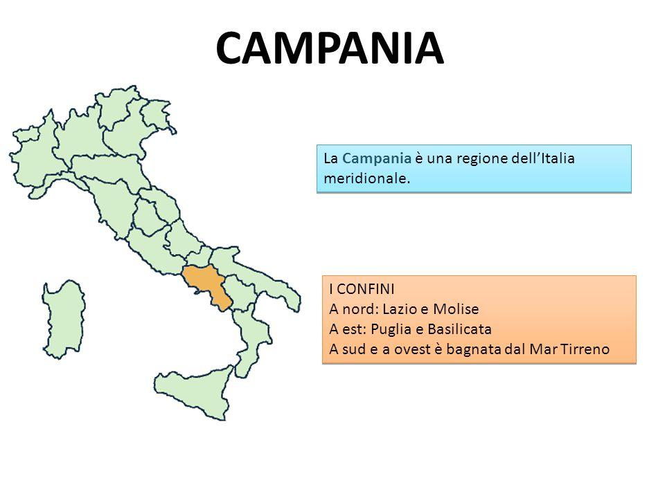 CAMPANIA La Campania è una regione dell'Italia meridionale. I CONFINI