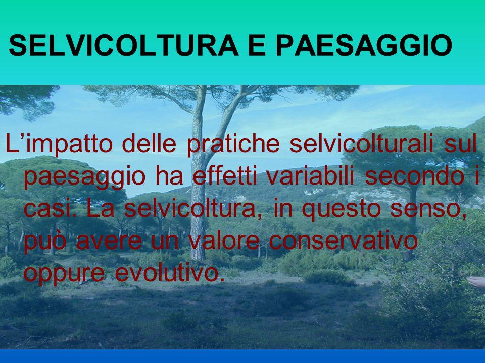 SELVICOLTURA E PAESAGGIO