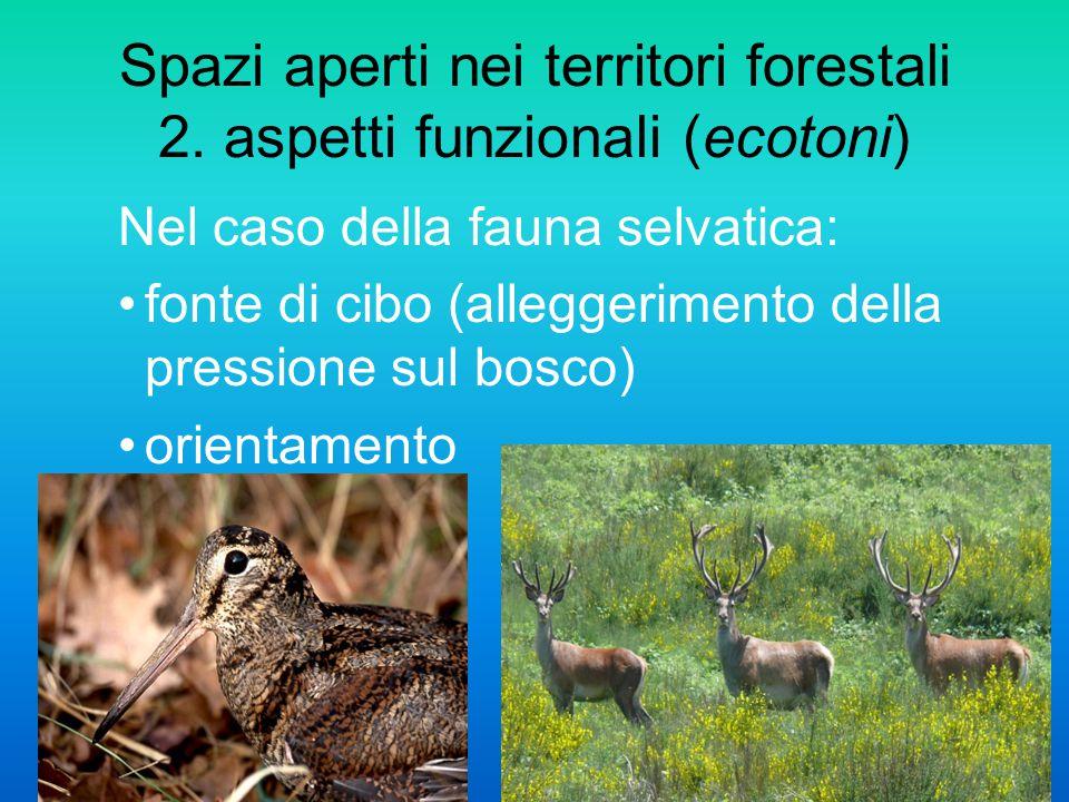 Spazi aperti nei territori forestali 2. aspetti funzionali (ecotoni)