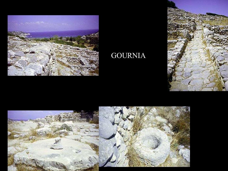 GOURNIA