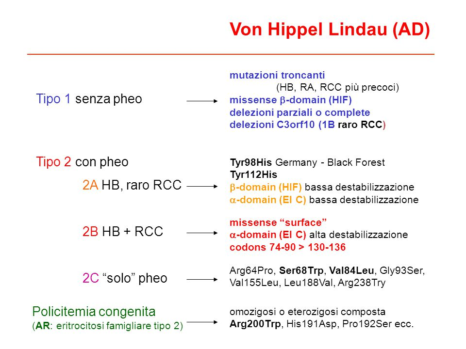 Von Hippel Lindau (AD) Tipo 1 senza pheo Tipo 2 con pheo