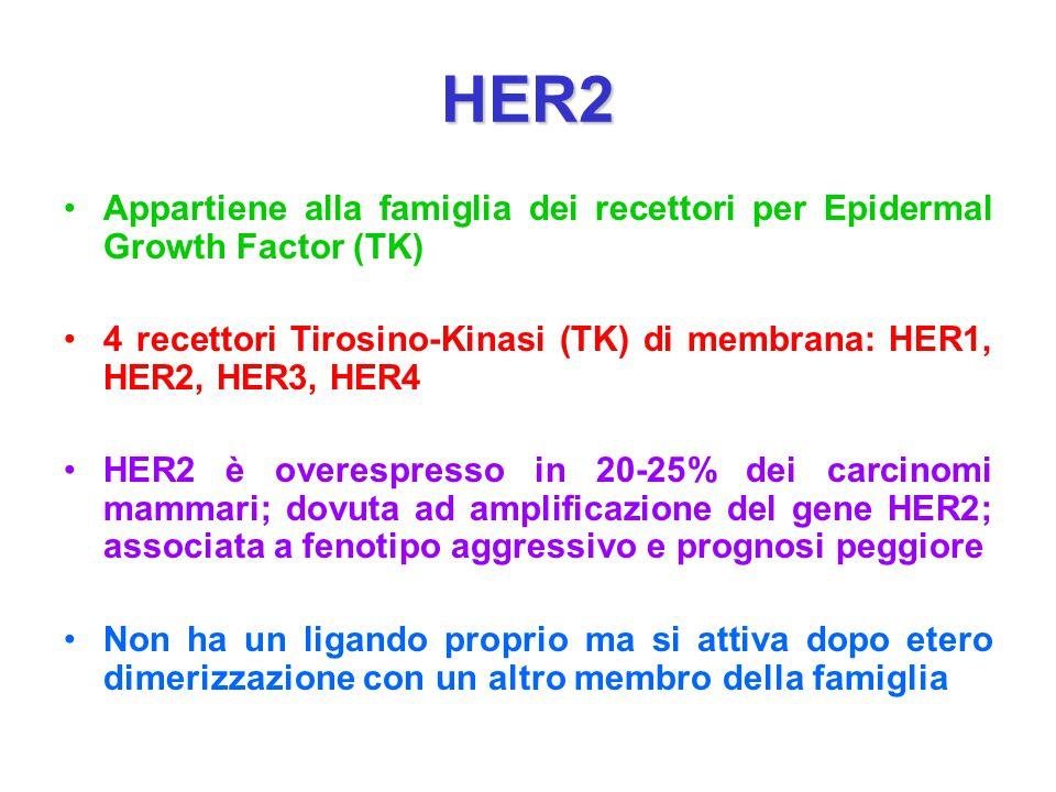 HER2 Appartiene alla famiglia dei recettori per Epidermal Growth Factor (TK) 4 recettori Tirosino-Kinasi (TK) di membrana: HER1, HER2, HER3, HER4.