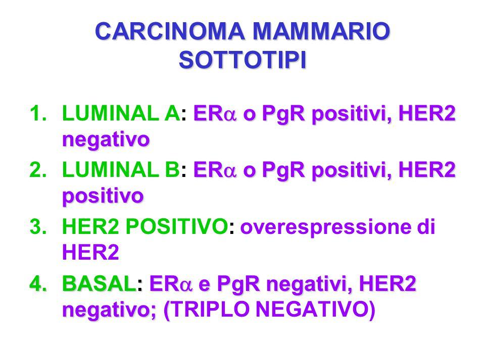 CARCINOMA MAMMARIO SOTTOTIPI