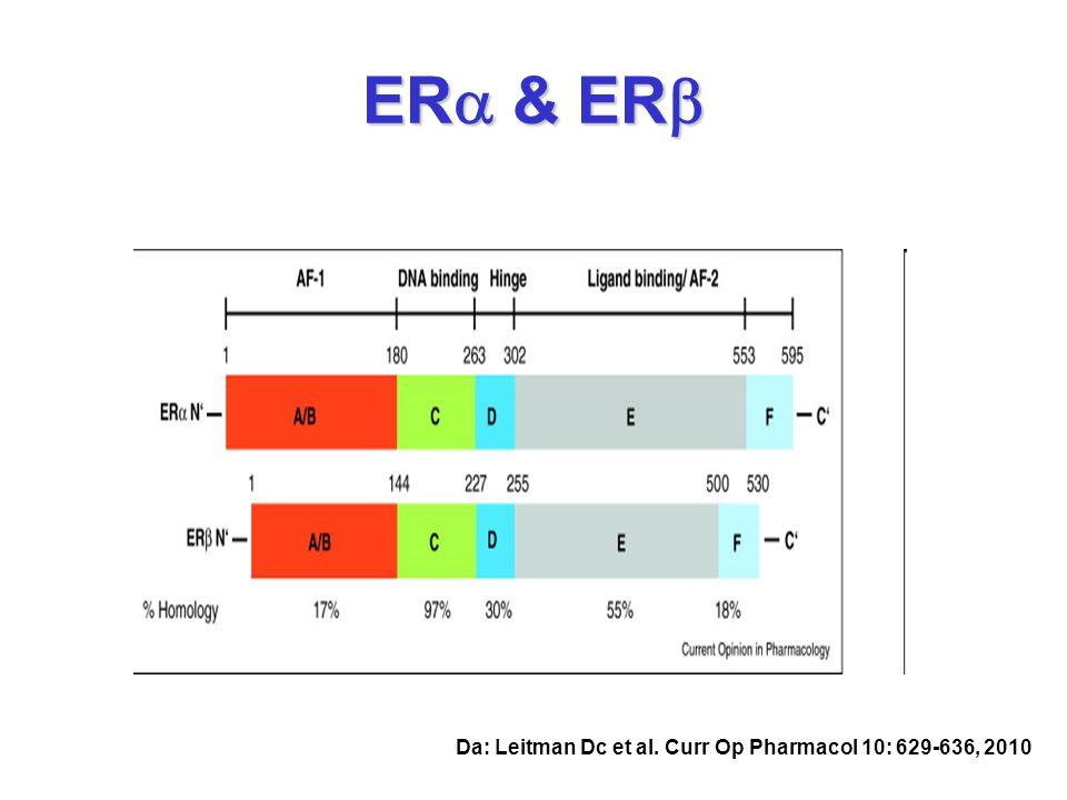 ERa & ERb Da: Leitman Dc et al. Curr Op Pharmacol 10: 629-636, 2010