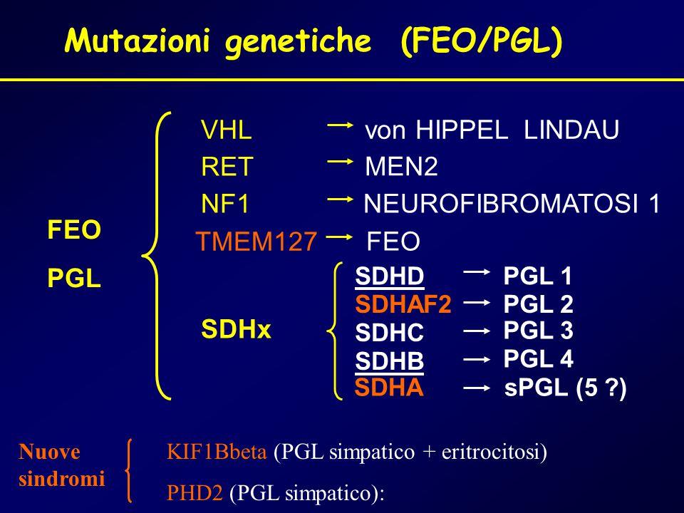 Mutazioni genetiche (FEO/PGL)
