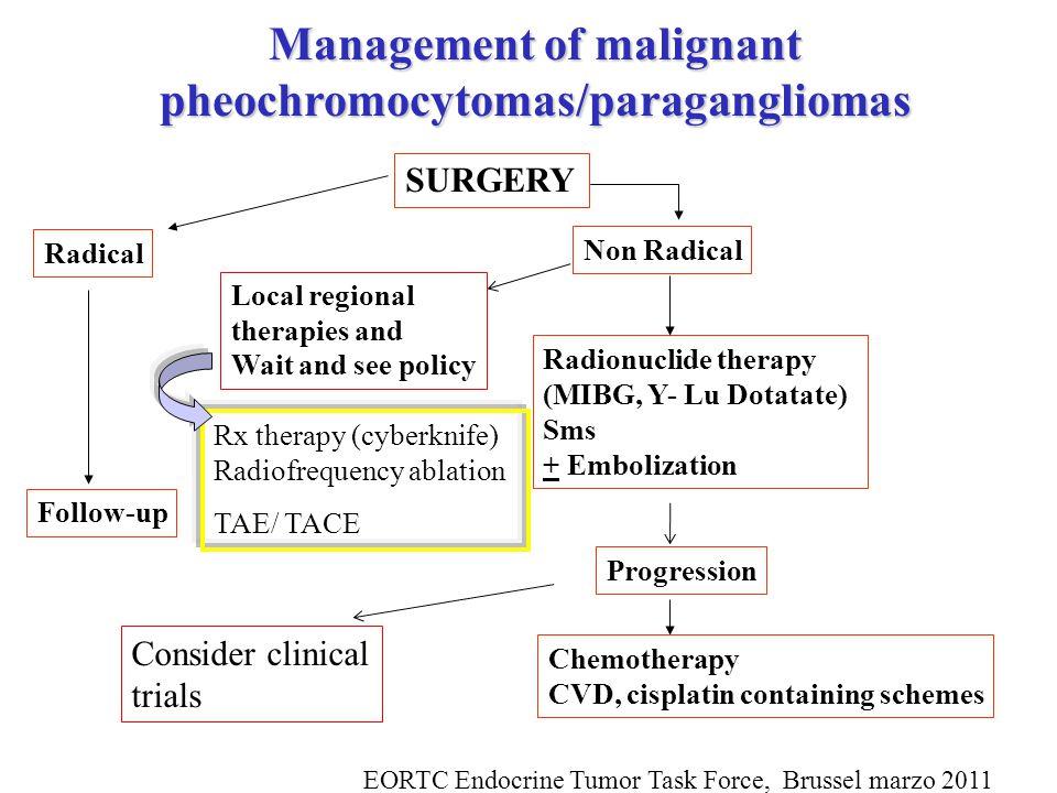 Management of malignant pheochromocytomas/paragangliomas