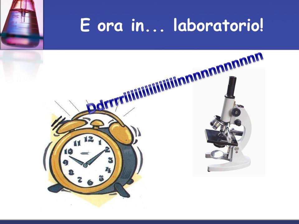 E ora in... laboratorio! Ddrrrriiiiiiiiiiiiiiinnnnnnnnnnn