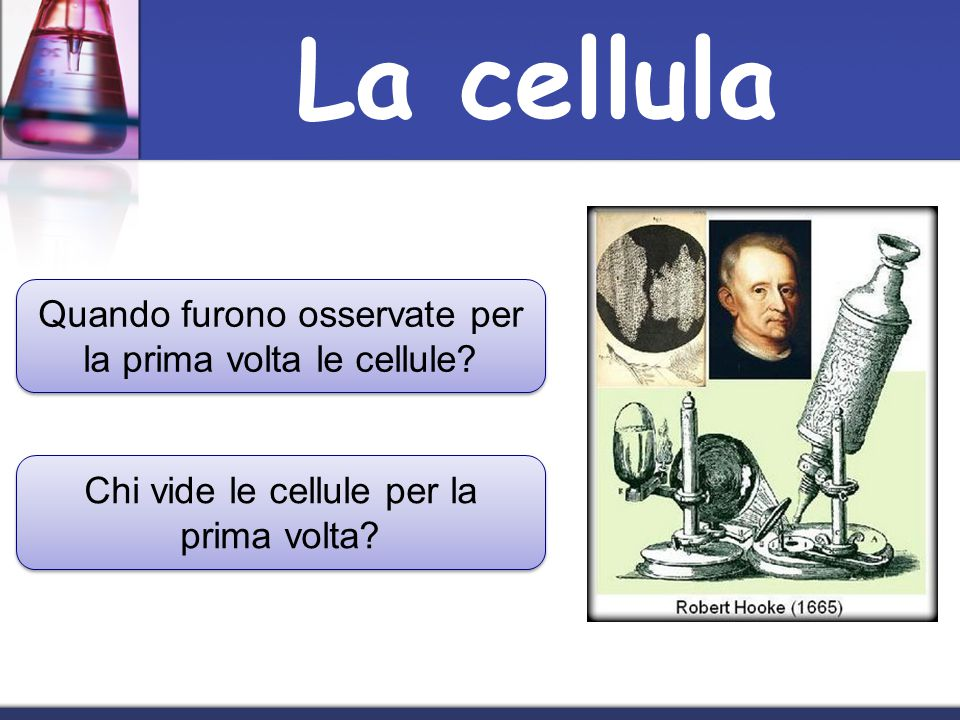 La cellula Quando furono osservate per la prima volta le cellule