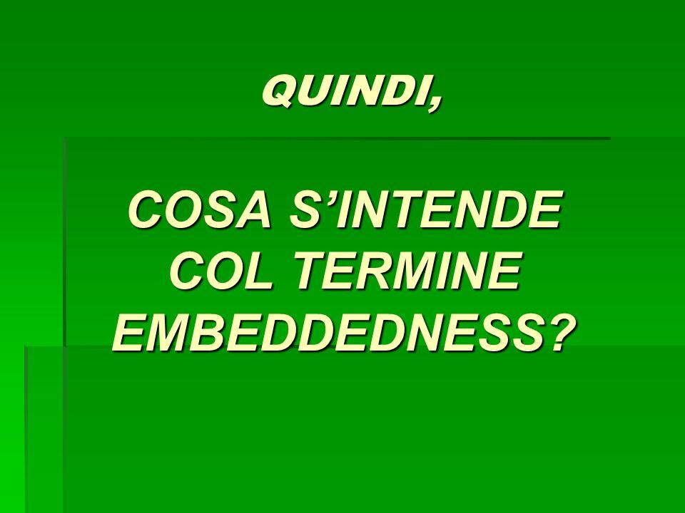 QUINDI, COSA S'INTENDE COL TERMINE EMBEDDEDNESS