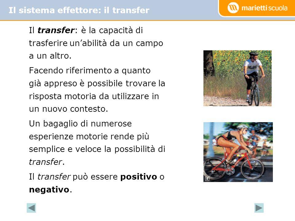 Il sistema effettore: il transfer