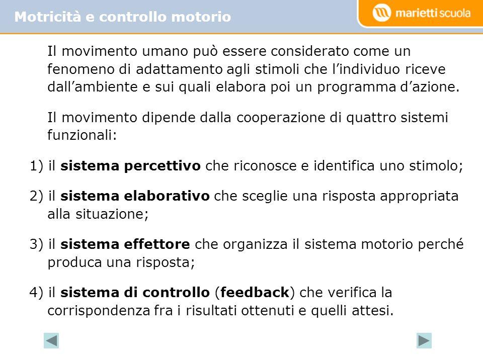 Motricità e controllo motorio