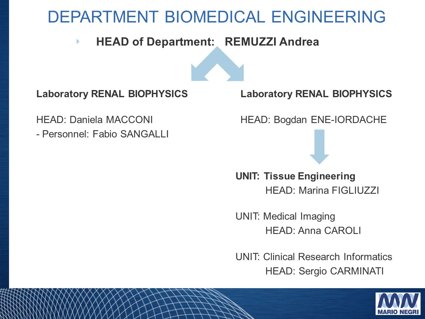 HEAD of Department: REMUZZI Andrea