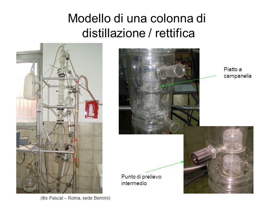 Modello di una colonna di distillazione / rettifica