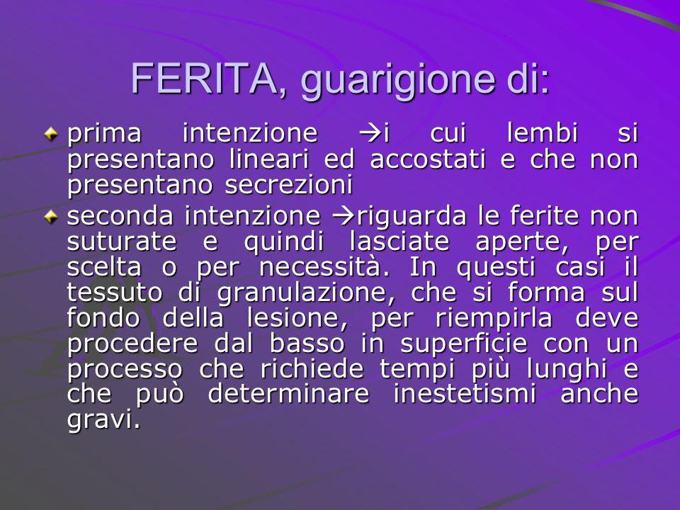 FERITA, guarigione di: prima intenzione i cui lembi si presentano lineari ed accostati e che non presentano secrezioni.