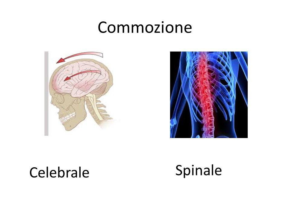 Commozione Spinale Celebrale