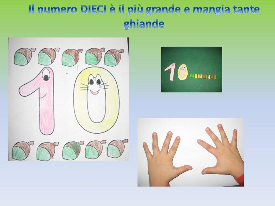 Il numero DIECI è il più grande e mangia tante ghiande