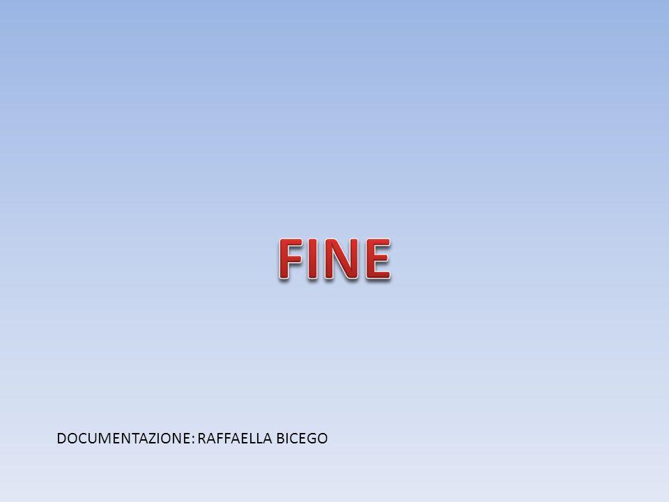 FINE DOCUMENTAZIONE: RAFFAELLA BICEGO