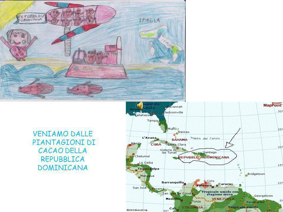 PIANTAGIONI DI CACAO DELLA REPUBBLICA DOMINICANA