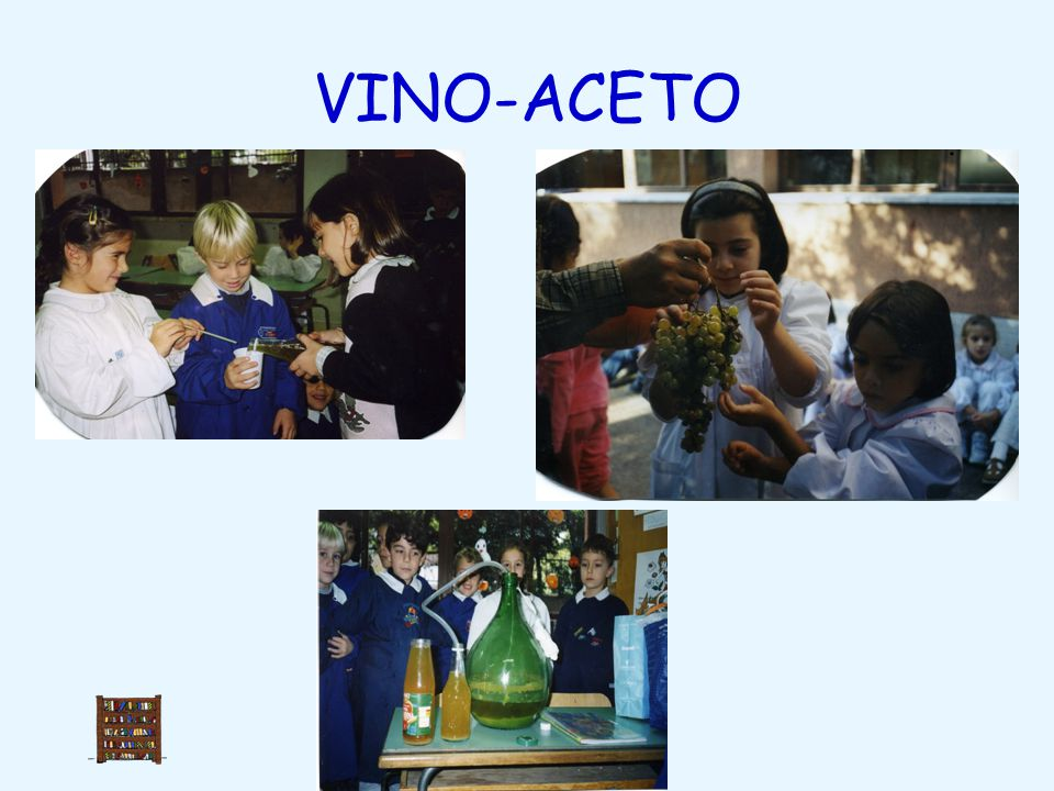 VINO-ACETO