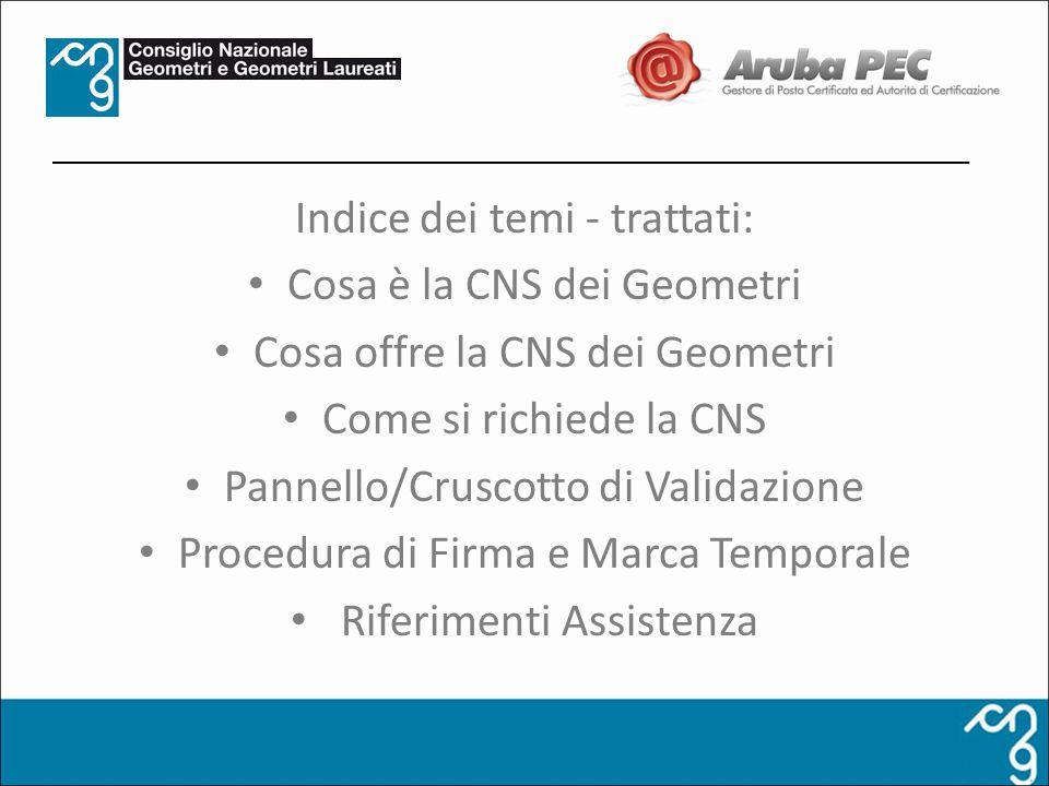 Indice dei temi - trattati: Cosa è la CNS dei Geometri