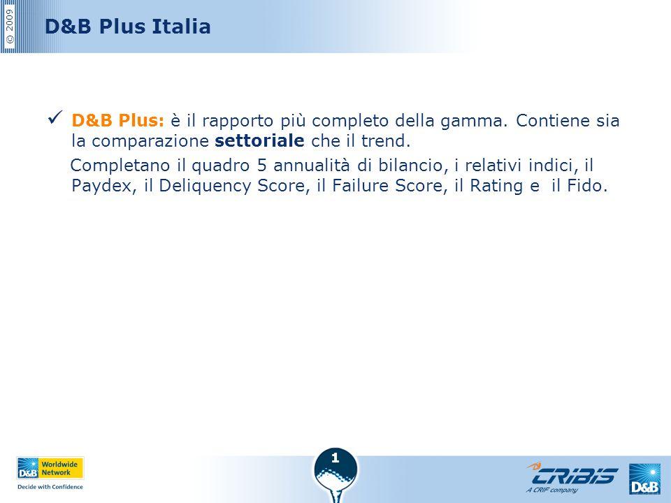 D&B Plus Italia D&B Plus: è il rapporto più completo della gamma. Contiene sia la comparazione settoriale che il trend.