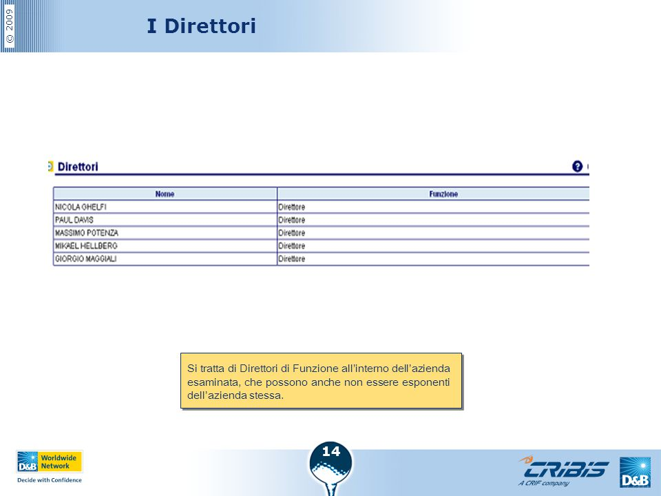 I Direttori Si tratta di Direttori di Funzione all'interno dell'azienda esaminata, che possono anche non essere esponenti dell'azienda stessa.