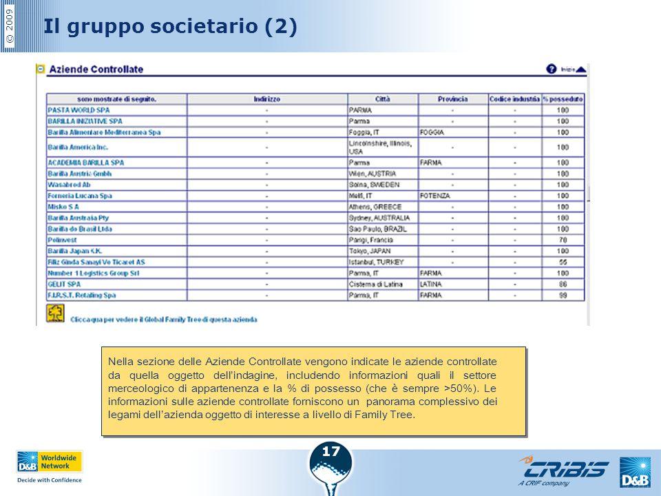 Il gruppo societario (2)