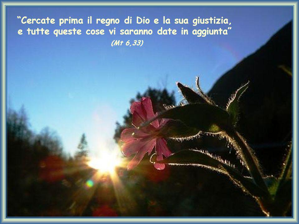 Cercate prima il regno di Dio e la sua giustizia, e tutte queste cose vi saranno date in aggiunta (Mt 6,33)