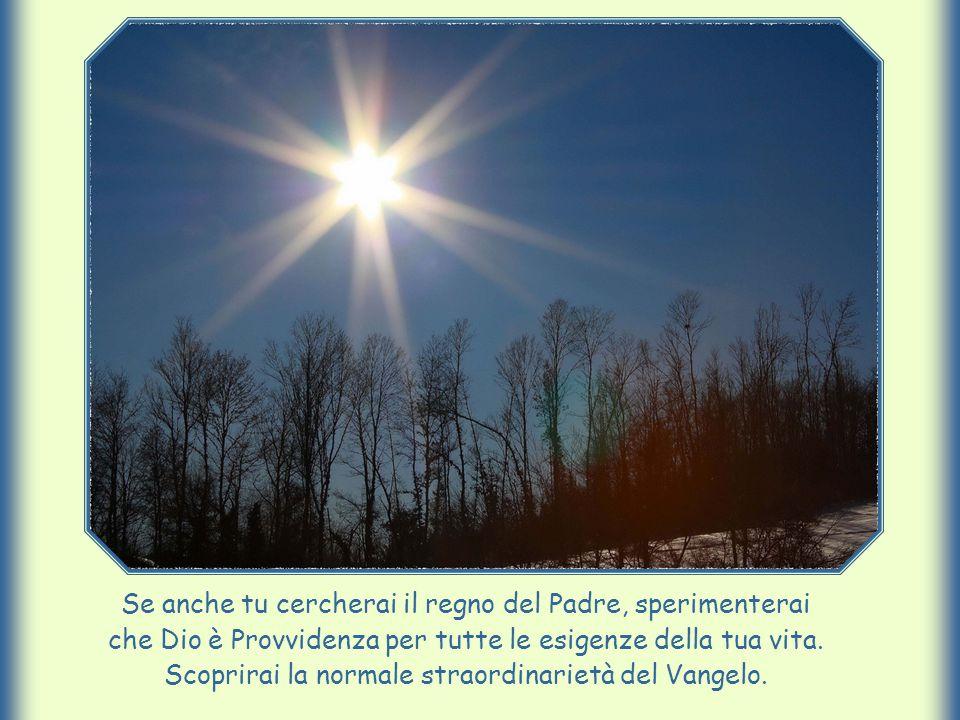 Se anche tu cercherai il regno del Padre, sperimenterai che Dio è Provvidenza per tutte le esigenze della tua vita.