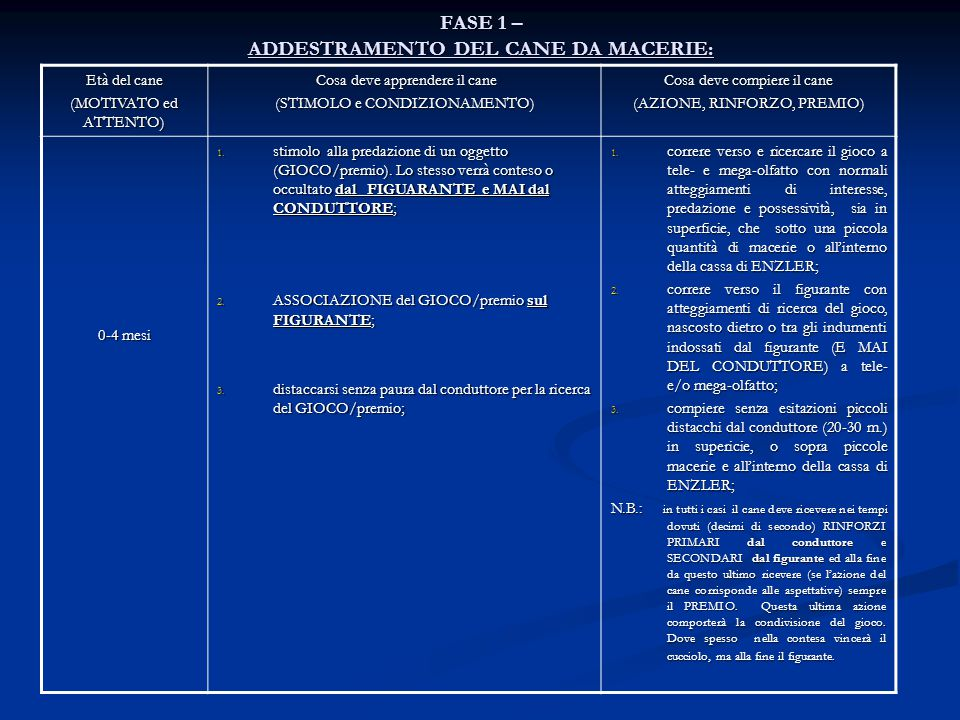 FASE 1 – ADDESTRAMENTO DEL CANE DA MACERIE: