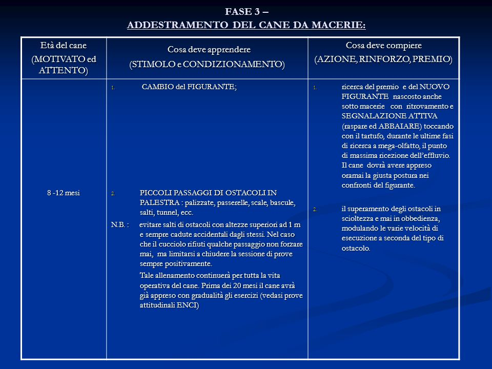 FASE 3 – ADDESTRAMENTO DEL CANE DA MACERIE: